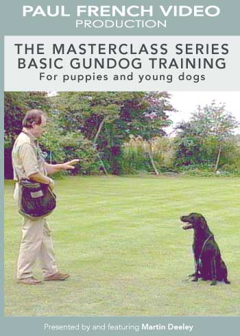Basic Gundog for puppies and young dogs with Martin Deeley