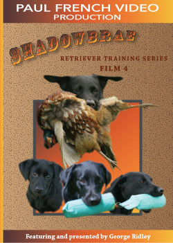Shadowbrae Retriever Training Series with George Ridley - Film 4